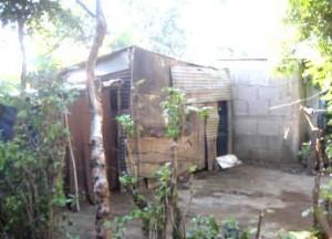 krot-nicaragua 2010